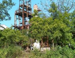 Das Fabrikgelande ist heute von Baumen und Strauchern uberwuchert.