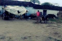 Dorfleben in Indien