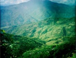 Gorkha Distrikt