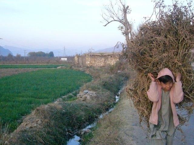 Gallery: Swat Tal, Pakistan