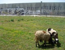 Die Stadt Kalkilya im Norden des Westjordanlandes ist komplett von der Trennmauer umschlossen